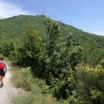Il facile sentiero che riconduce al Centro Storico di Salerno